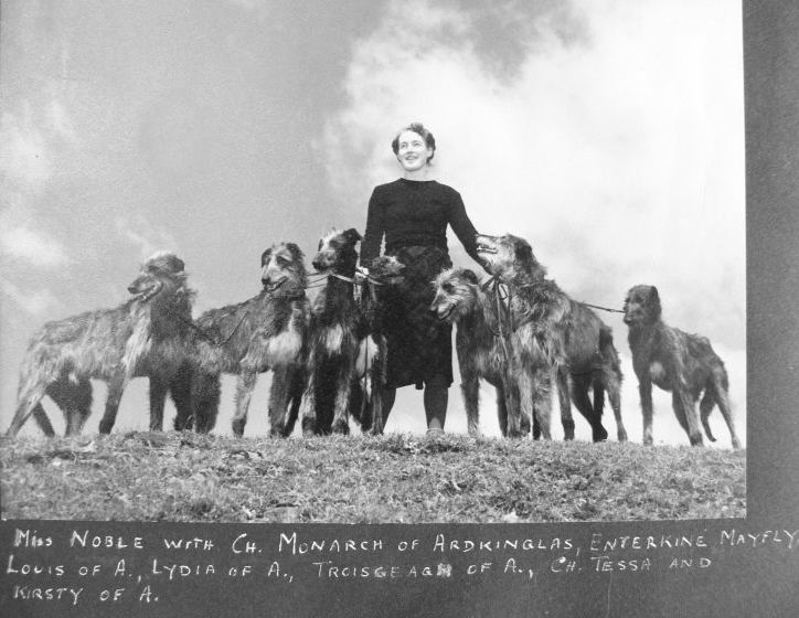 miss a noble deerhound geschiedenis