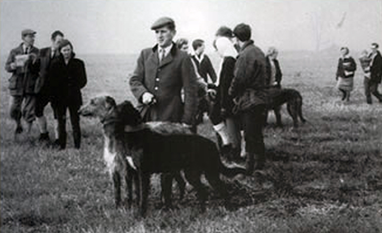 Bo Bengston 1965 coursing deerhound history
